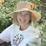 Gail Morris will let students know how they can participate in Monarch butterfly tagging.